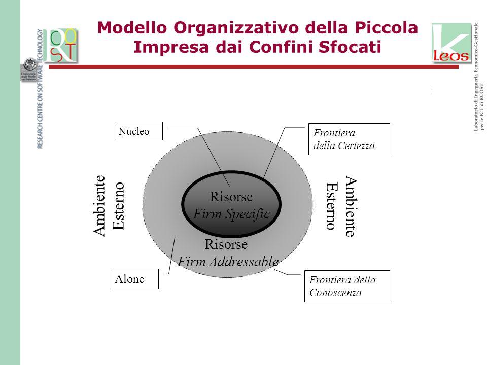 Modello Organizzativo della Piccola Impresa dai Confini Sfocati