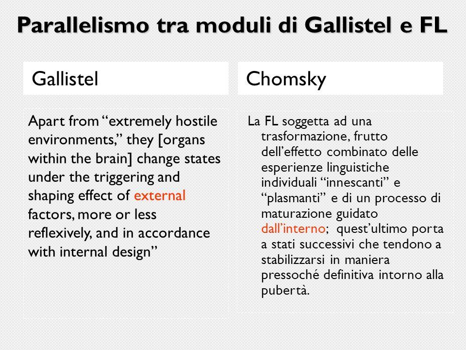 Parallelismo tra moduli di Gallistel e FL