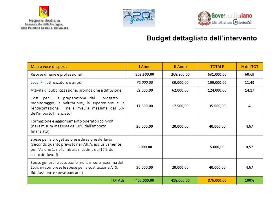 Budget dettagliato dell'intervento