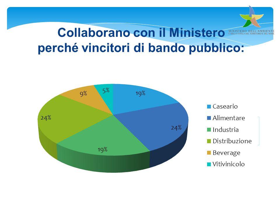Collaborano con il Ministero perché vincitori di bando pubblico: