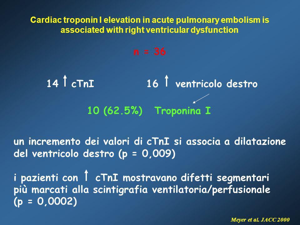 14 cTnI 16 ventricolo destro
