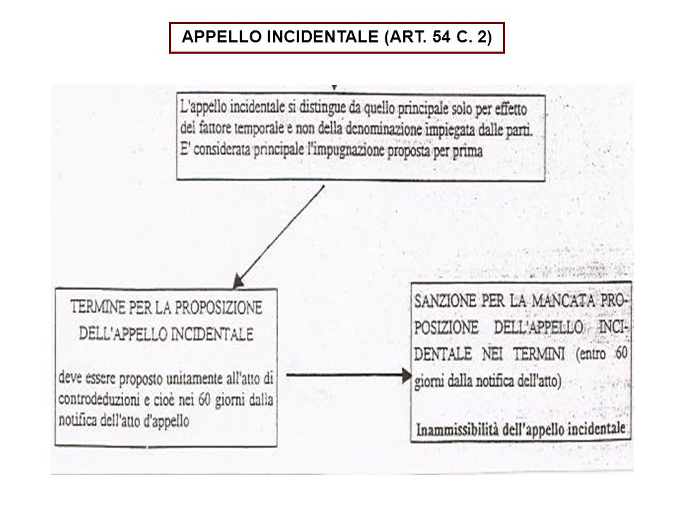 APPELLO INCIDENTALE (ART. 54 C. 2)