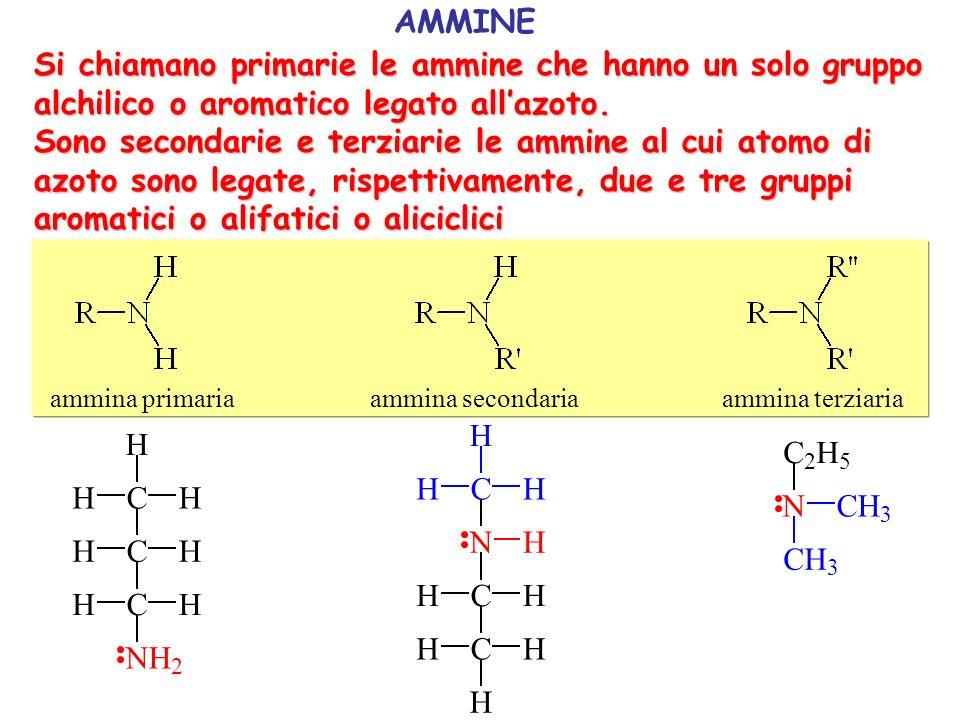AMMINE Si chiamano primarie le ammine che hanno un solo gruppo alchilico o aromatico legato all'azoto.