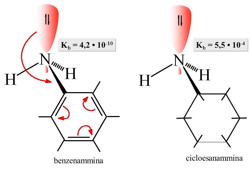 Kb = 4,2 • 10-10 Kb = 5,5 • 10-4 benzenammina cicloesanammina