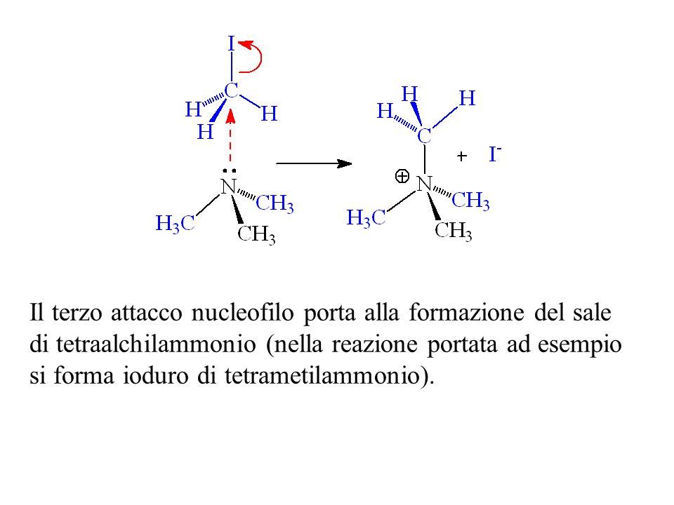 Il terzo attacco nucleofilo porta alla formazione del sale