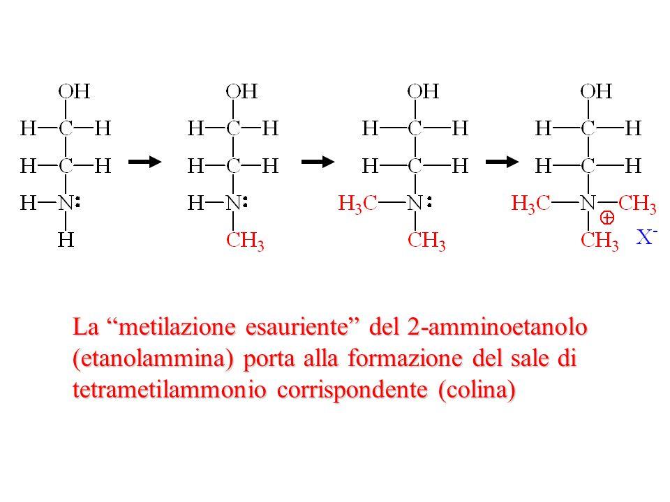 La metilazione esauriente del 2-amminoetanolo