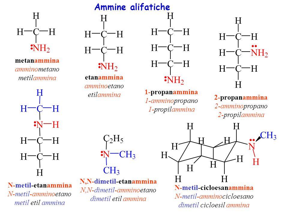C H N C H N C H N C H N C H N H N C N C H Ammine alifatiche 2