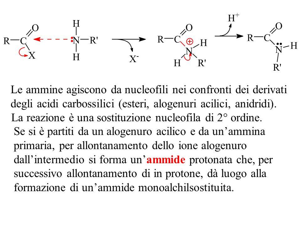 Le ammine agiscono da nucleofili nei confronti dei derivati