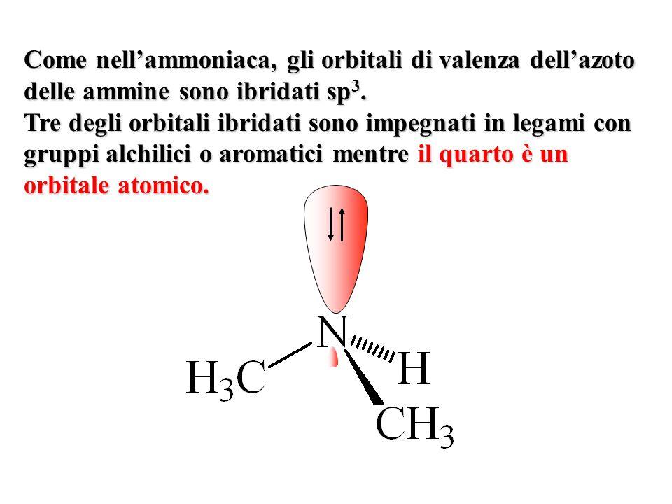 Come nell'ammoniaca, gli orbitali di valenza dell'azoto