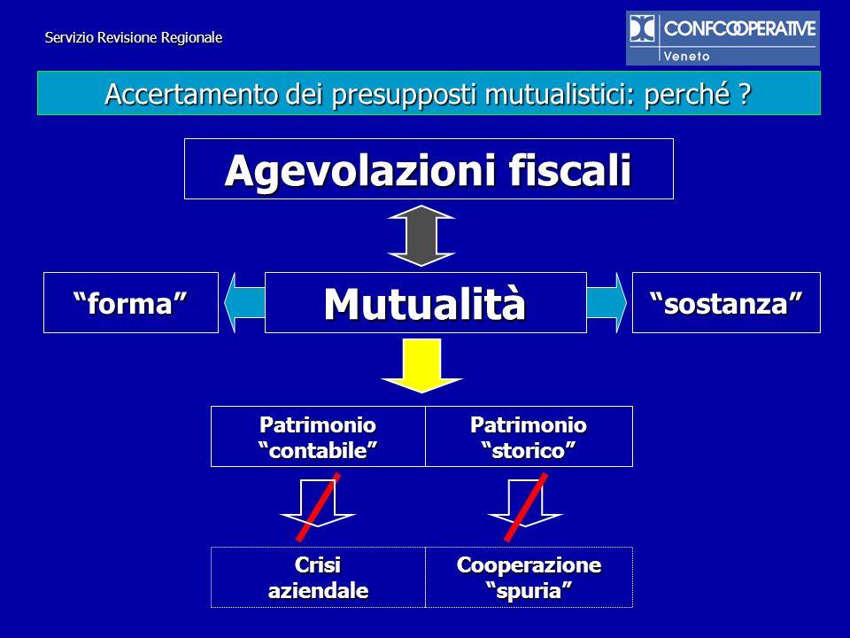Patrimonio contabile Cooperazione spuria