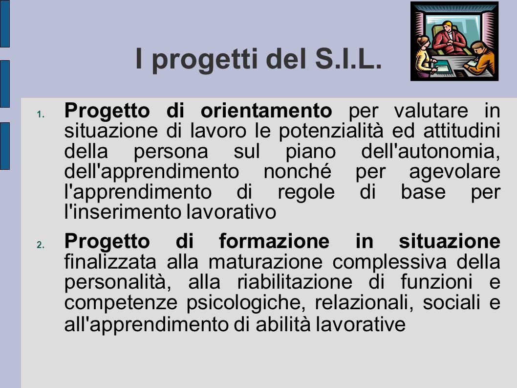 I progetti del S.I.L.