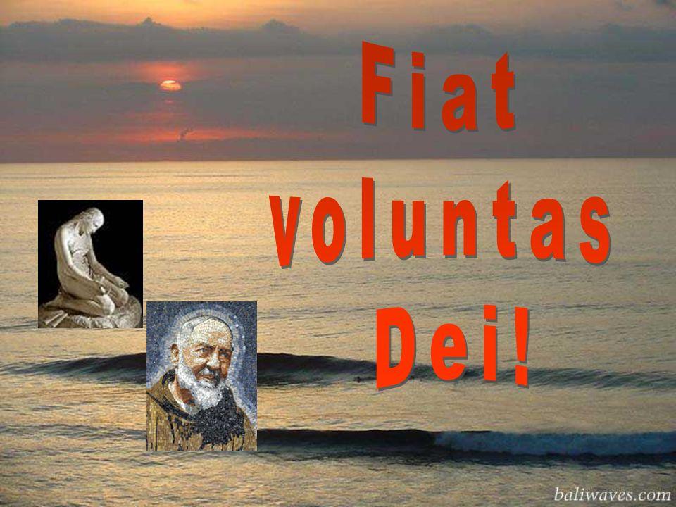 Fiat voluntas Dei!