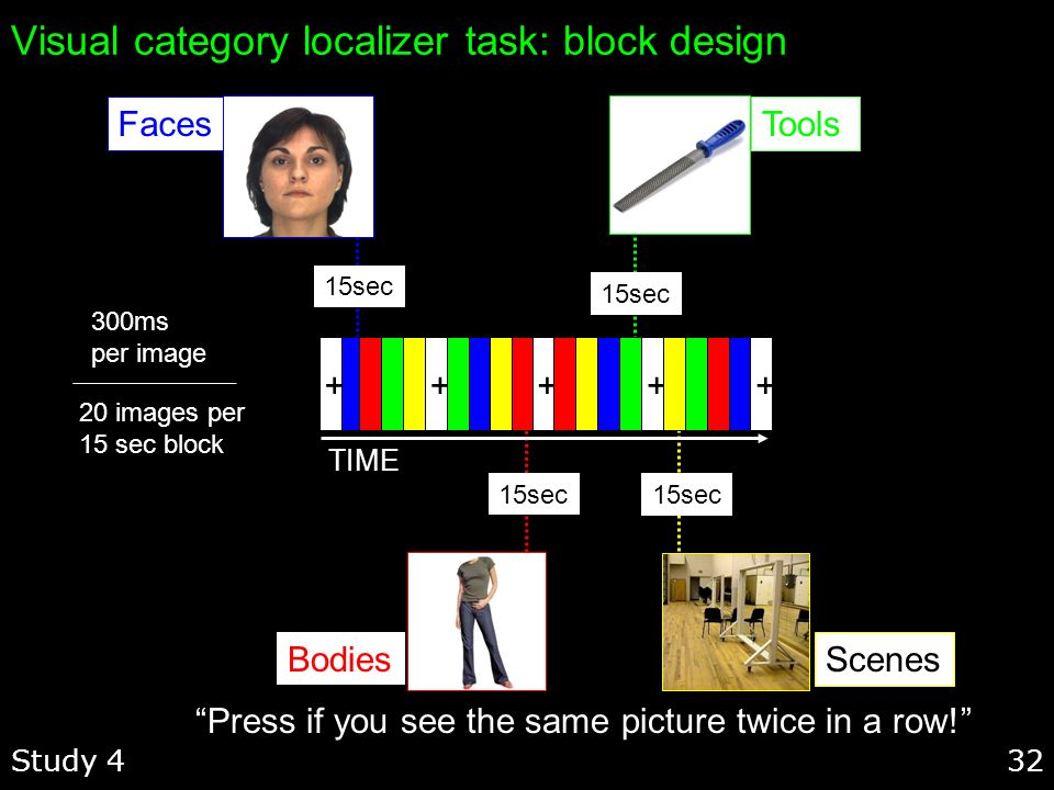 Visual category localizer task: block design