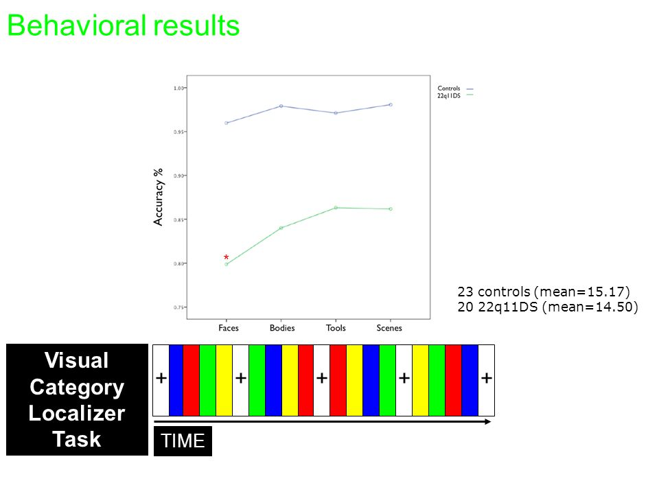 Behavioral results Visual Category Localizer + Task TIME Study 4 *