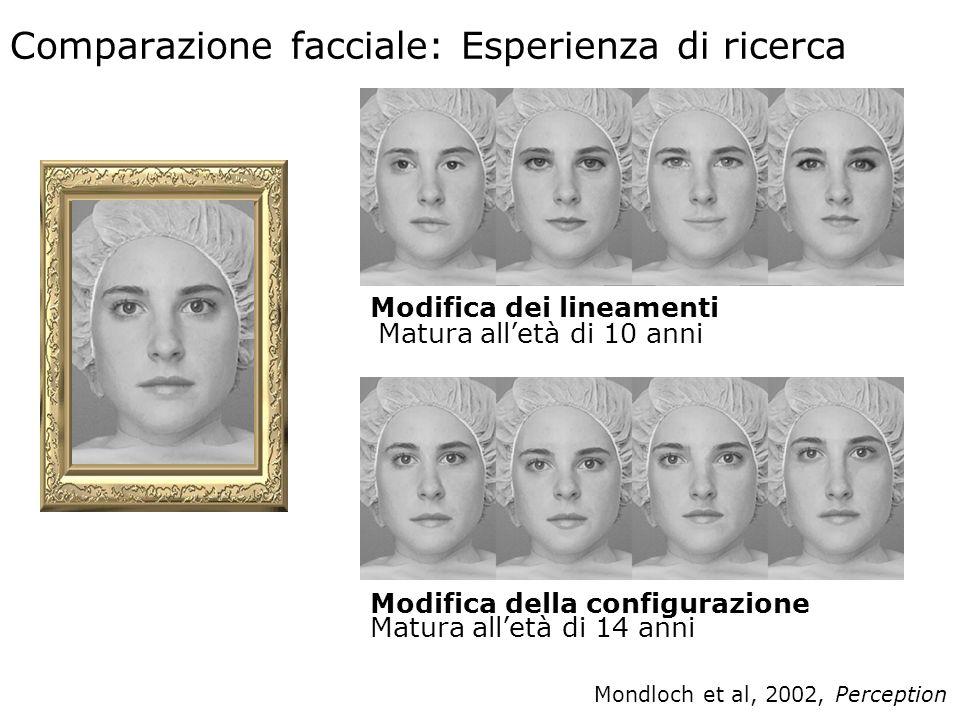 Comparazione facciale: Esperienza di ricerca
