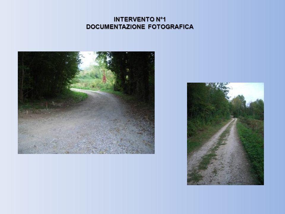 INTERVENTO N°1 DOCUMENTAZIONE FOTOGRAFICA