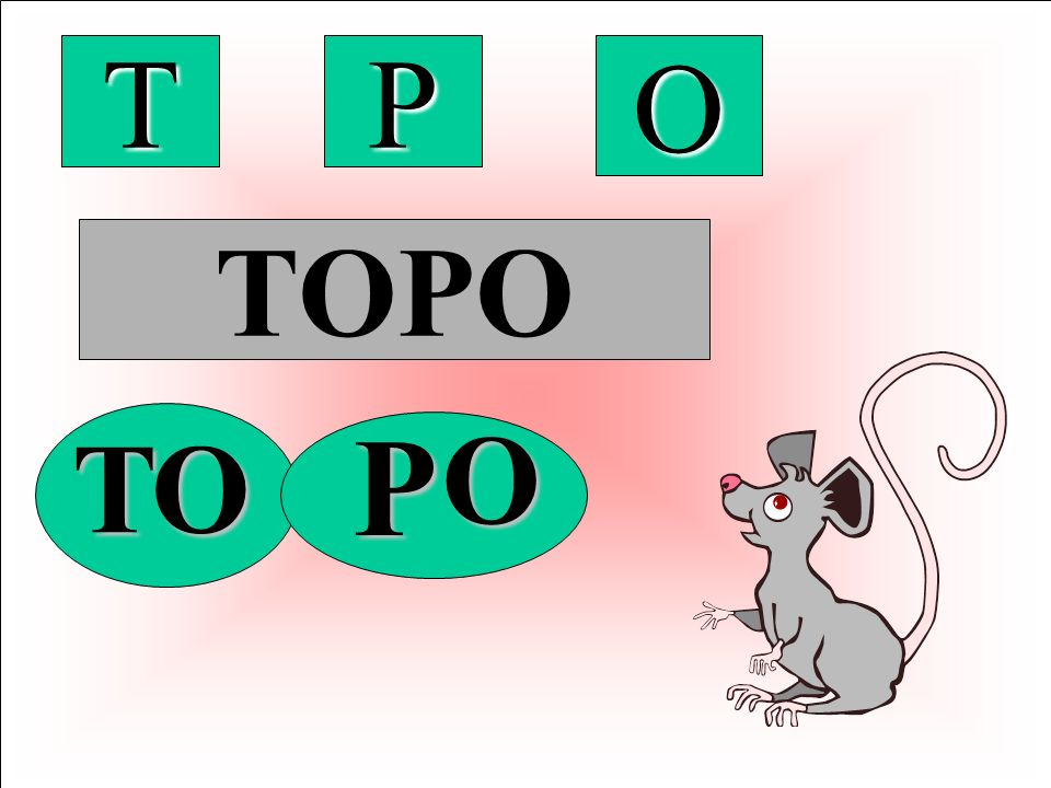 T P O TOPO P O T O