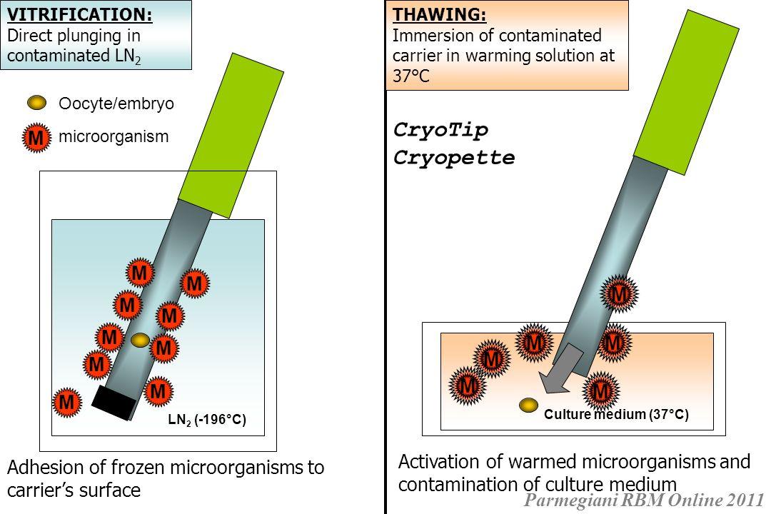 CryoTip Cryopette M M M M M M M M M M M M M M M M