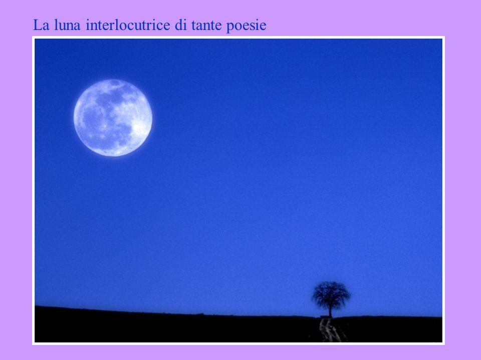 La luna interlocutrice di tante poesie