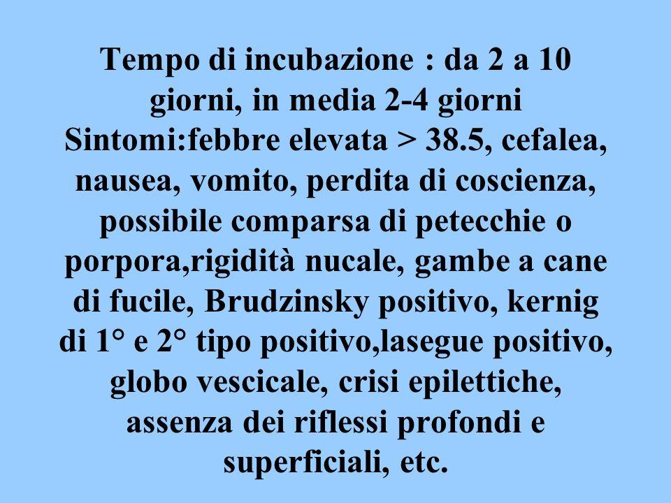 Tempo di incubazione : da 2 a 10 giorni, in media 2-4 giorni Sintomi:febbre elevata > 38.5, cefalea, nausea, vomito, perdita di coscienza, possibile comparsa di petecchie o porpora,rigidità nucale, gambe a cane di fucile, Brudzinsky positivo, kernig di 1° e 2° tipo positivo,lasegue positivo, globo vescicale, crisi epilettiche, assenza dei riflessi profondi e superficiali, etc.