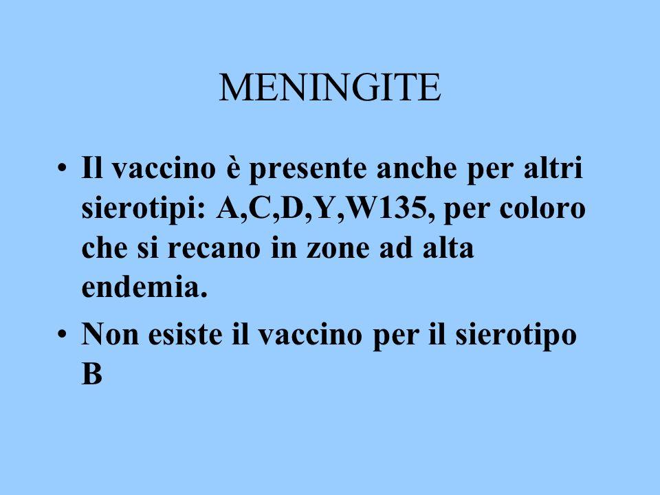 MENINGITEIl vaccino è presente anche per altri sierotipi: A,C,D,Y,W135, per coloro che si recano in zone ad alta endemia.