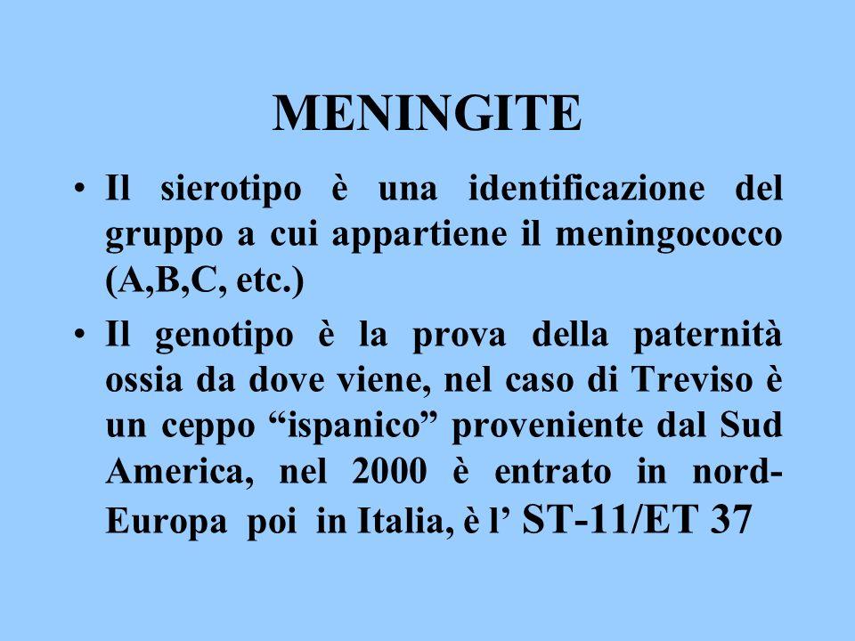 MENINGITE Il sierotipo è una identificazione del gruppo a cui appartiene il meningococco (A,B,C, etc.)