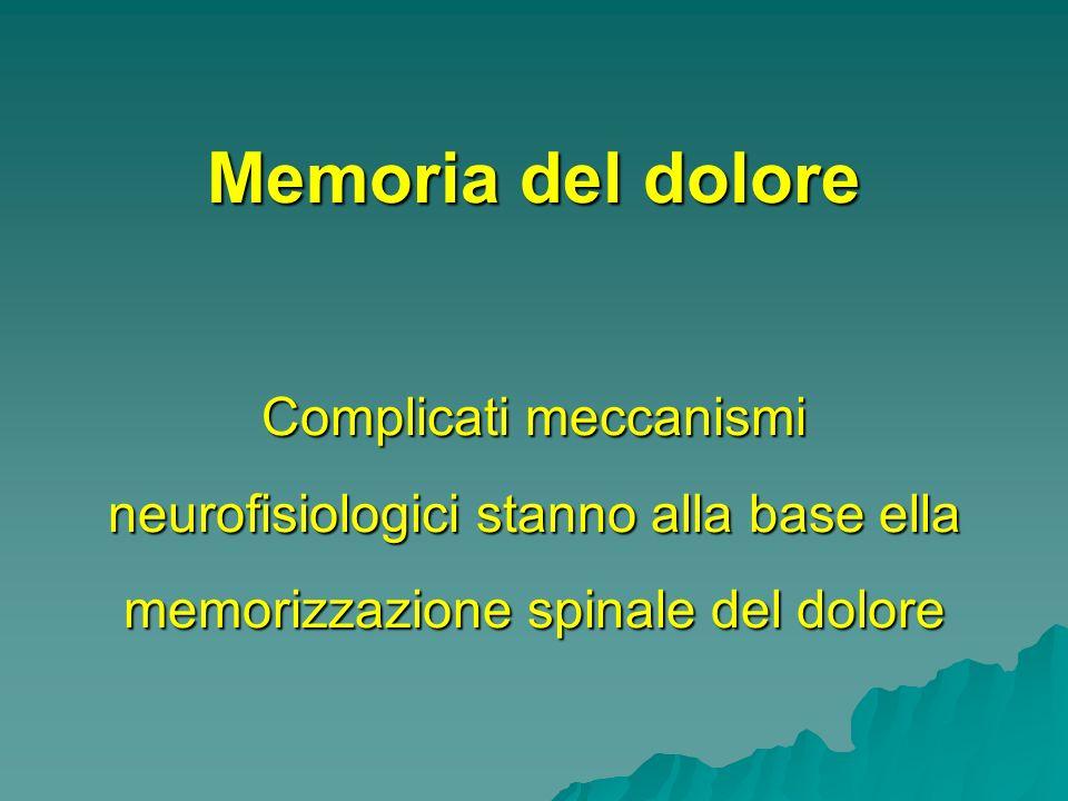 Memoria del dolore Complicati meccanismi neurofisiologici stanno alla base ella memorizzazione spinale del dolore