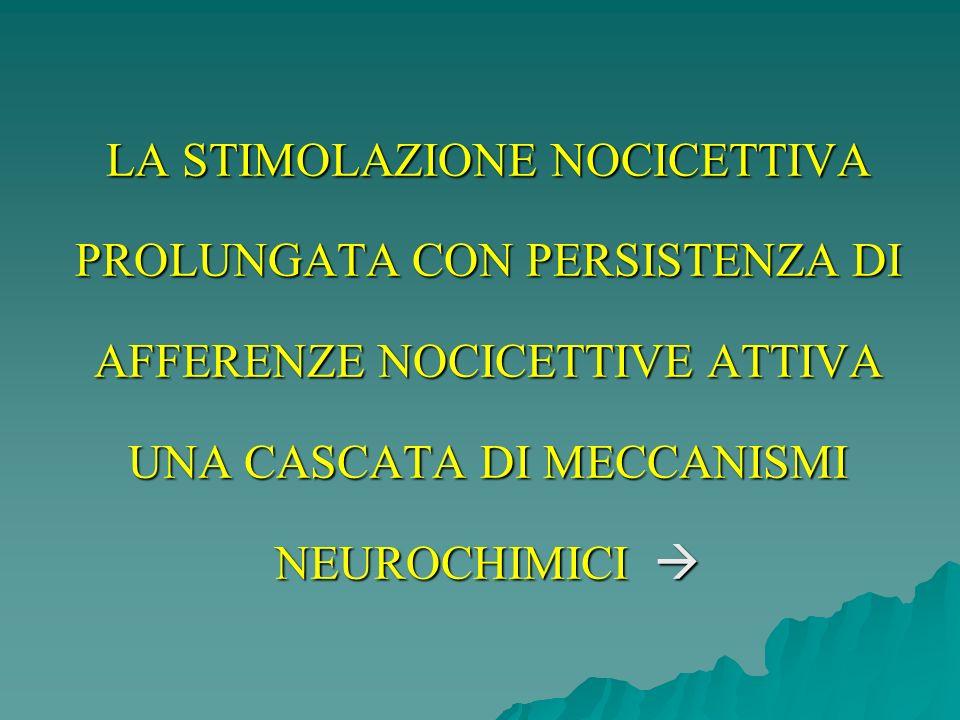 LA STIMOLAZIONE NOCICETTIVA PROLUNGATA CON PERSISTENZA DI AFFERENZE NOCICETTIVE ATTIVA UNA CASCATA DI MECCANISMI NEUROCHIMICI 