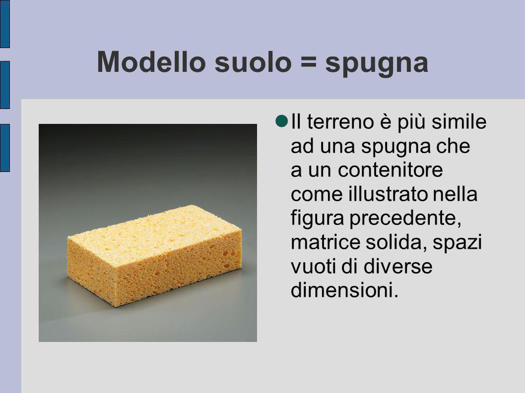 Modello suolo = spugna
