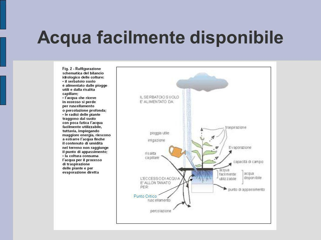 Acqua facilmente disponibile
