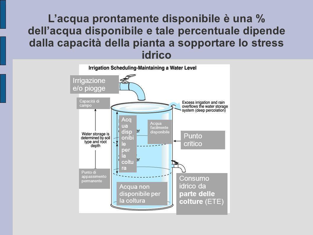 L'acqua prontamente disponibile è una % dell'acqua disponibile e tale percentuale dipende dalla capacità della pianta a sopportare lo stress idrico