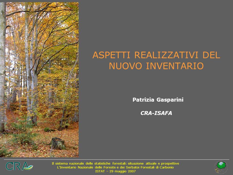 ASPETTI REALIZZATIVI DEL NUOVO INVENTARIO Patrizia Gasparini CRA-ISAFA