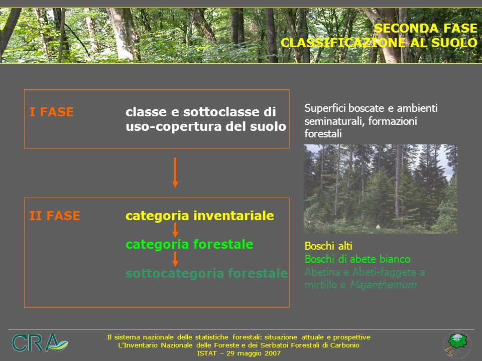 CLASSIFICAZIONE AL SUOLO