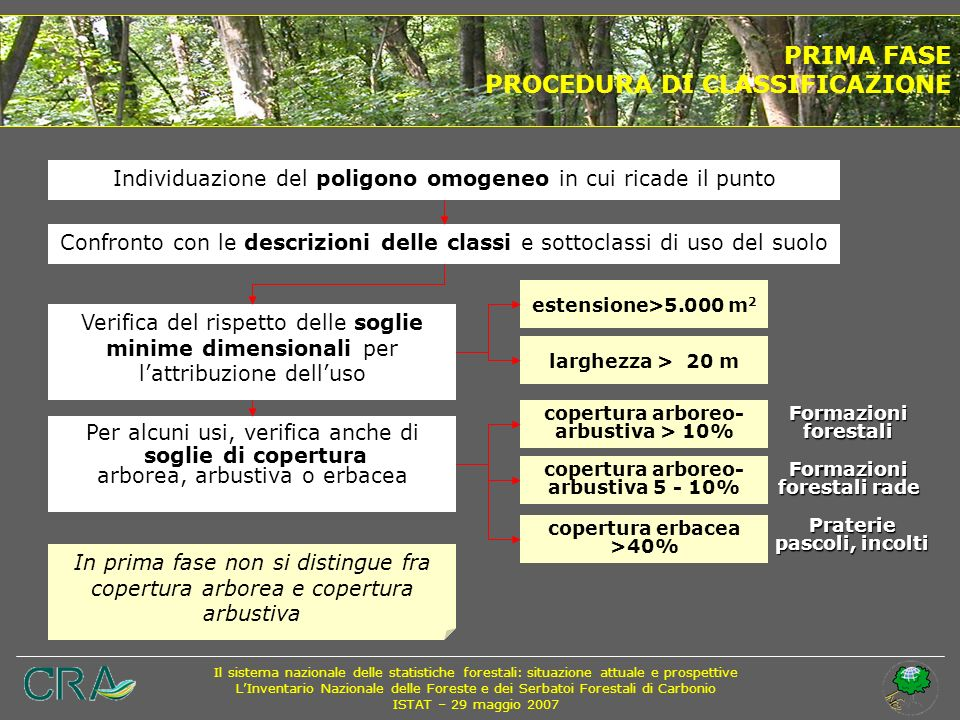PROCEDURA DI CLASSIFICAZIONE