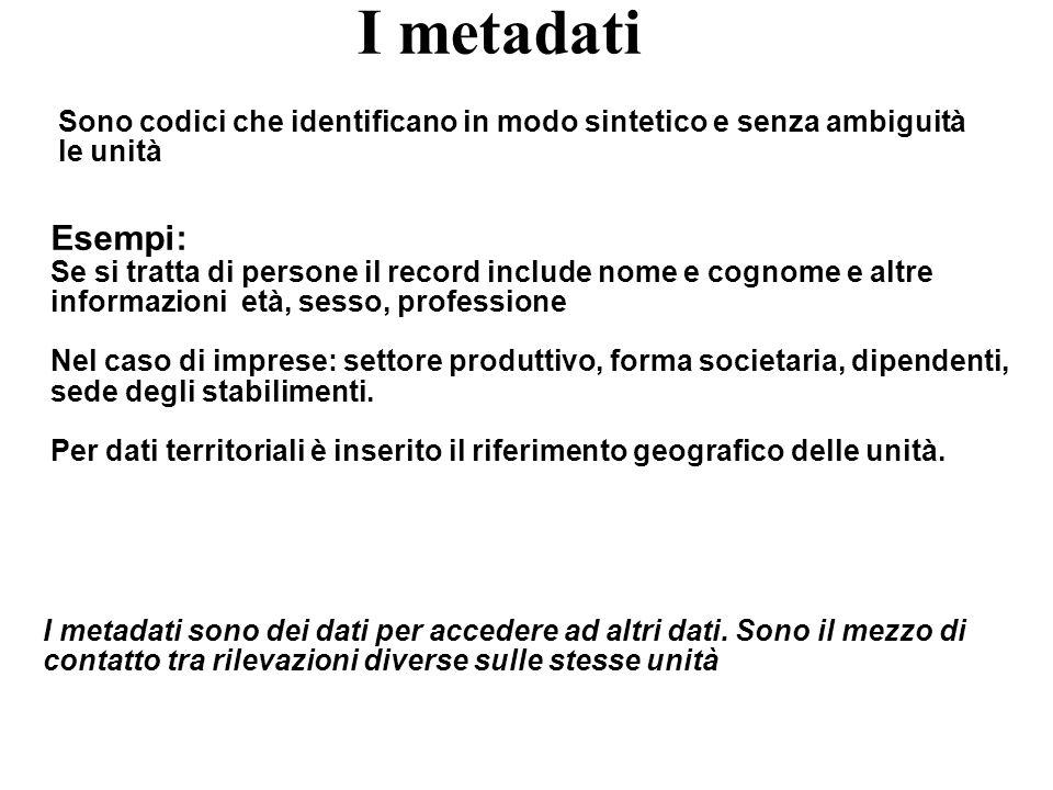 I metadati Sono codici che identificano in modo sintetico e senza ambiguità le unità. Esempi: