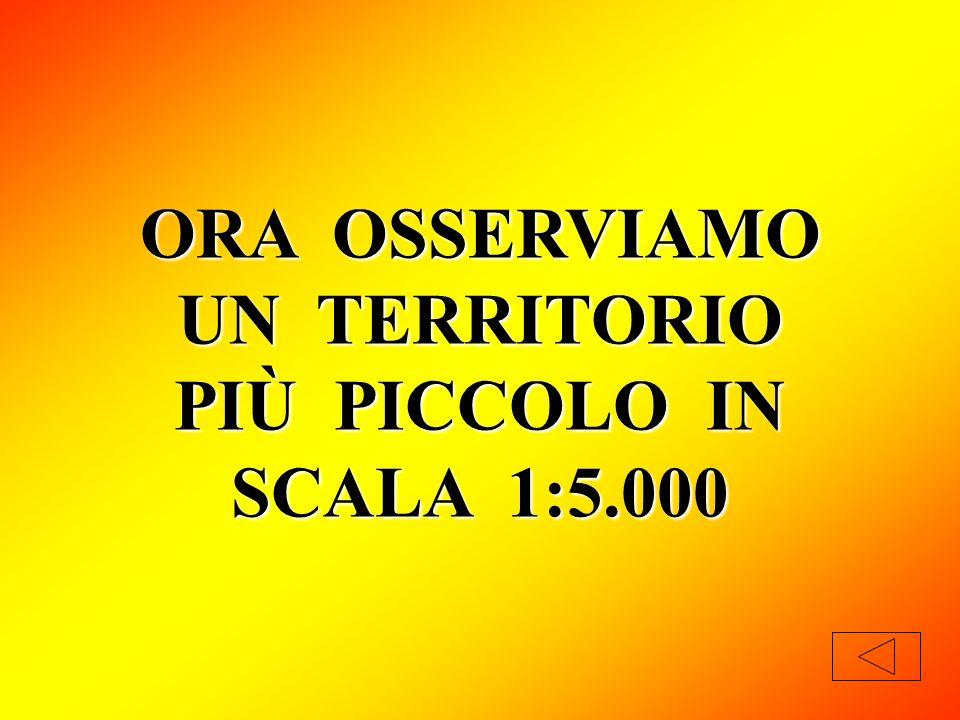 ORA OSSERVIAMO UN TERRITORIO PIÙ PICCOLO IN SCALA 1:5.000
