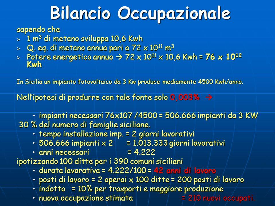 Bilancio Occupazionale