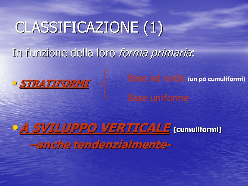 CLASSIFICAZIONE (1) A SVILUPPO VERTICALE (cumuliformi)