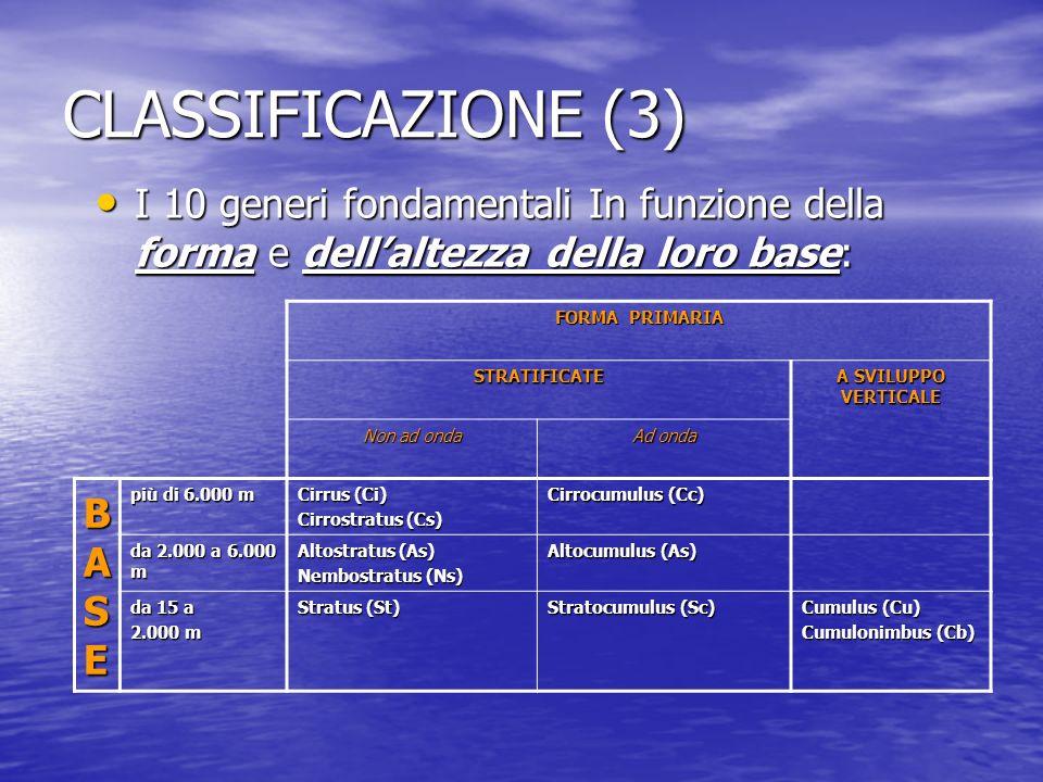CLASSIFICAZIONE (3) I 10 generi fondamentali In funzione della forma e dell'altezza della loro base:
