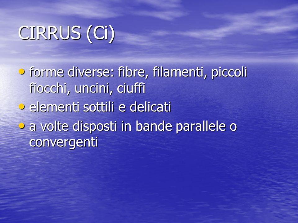 CIRRUS (Ci) forme diverse: fibre, filamenti, piccoli fiocchi, uncini, ciuffi. elementi sottili e delicati.