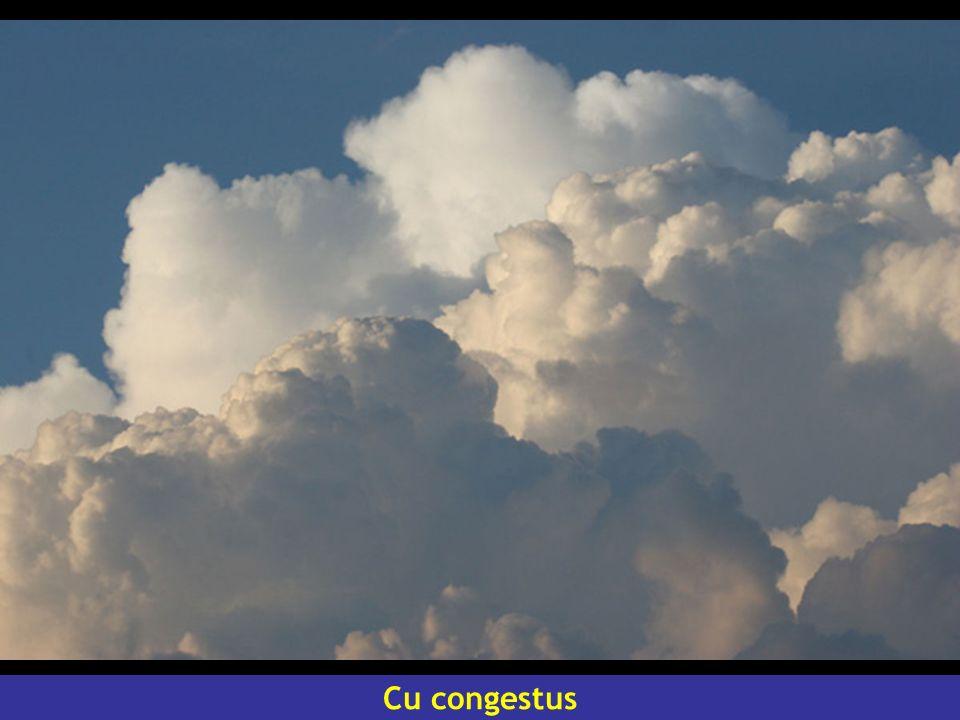 Cu congestus