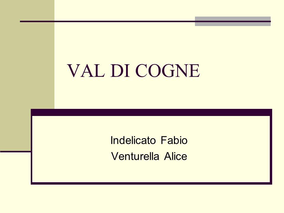 Indelicato Fabio Venturella Alice