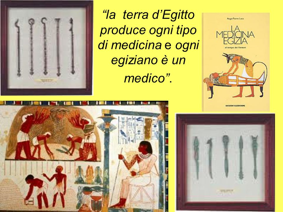 la terra d'Egitto produce ogni tipo di medicina e ogni egiziano è un medico .