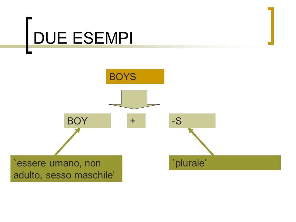 DUE ESEMPI BOYS BOY + -S `essere umano, non adulto, sesso maschile'