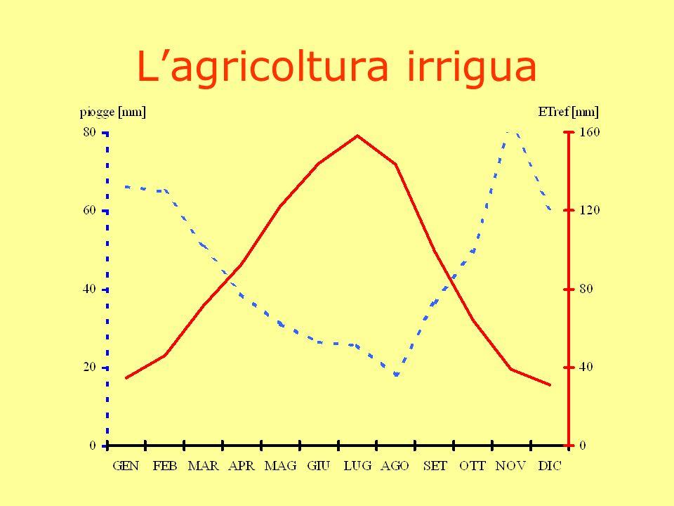 L'agricoltura irrigua