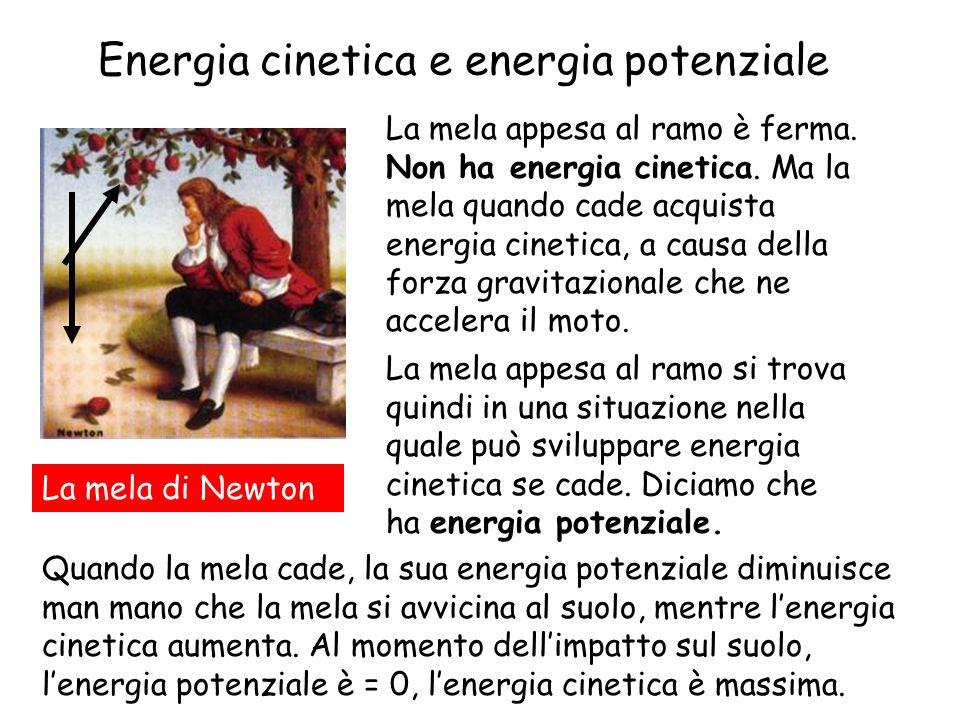 Energia cinetica e energia potenziale
