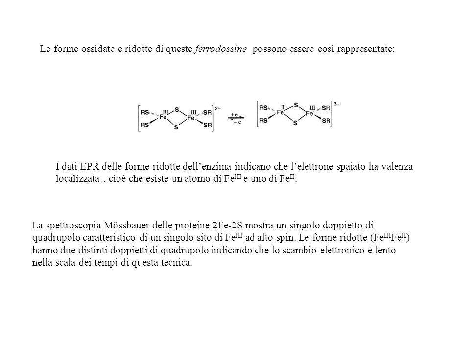 Le forme ossidate e ridotte di queste ferrodossine possono essere così rappresentate: