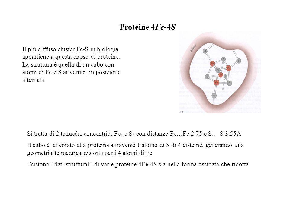Proteine 4Fe-4S