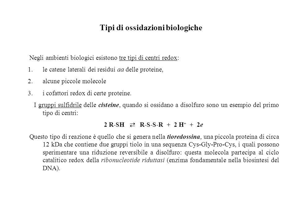 Tipi di ossidazioni biologiche