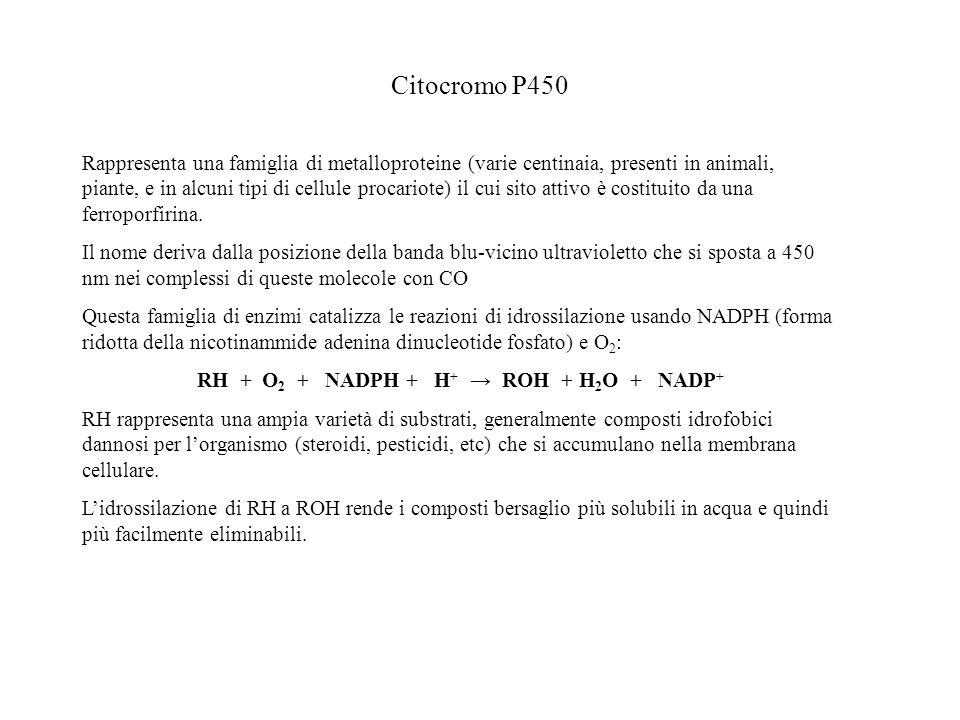 RH + O2 + NADPH + H+ → ROH + H2O + NADP+